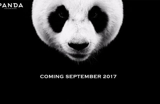 Panda Condos Toronto